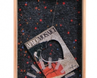 6-iodata ( omaggio a Cervia) cm 65 x 40.jpg